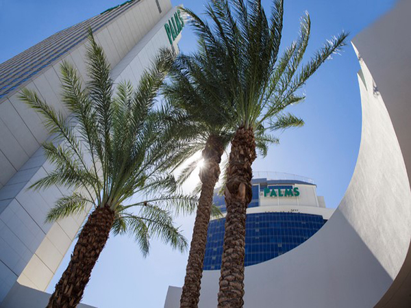 Palms Fantasy Tower Remodel